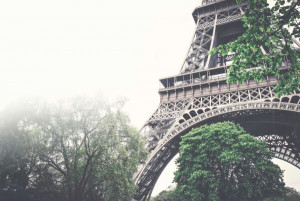 フランス大学院留学:専門性を高めたい方にアドバイス。論文に必要な語学力は?